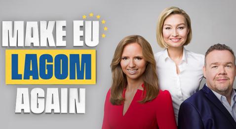 Make EU lagom again