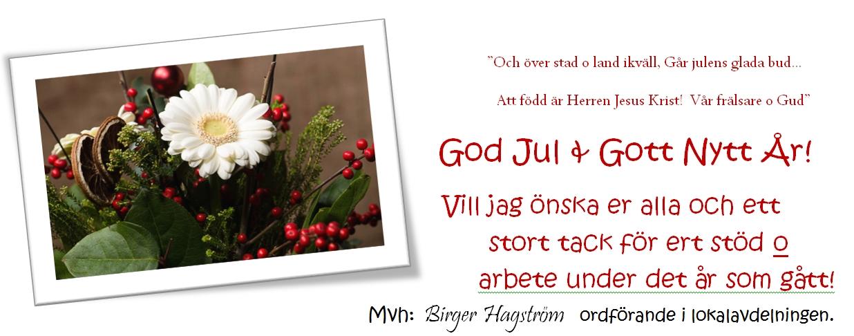 http://wp.kristdemokraterna.se/mjolby/files/2014/12/kdmjolby_julhalsning_dec2014.jpg