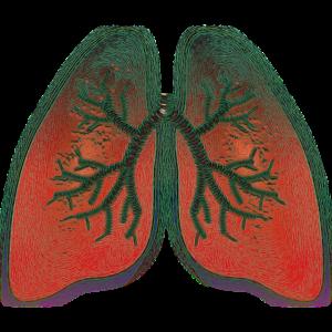 Lunga med cancer i bronkerna. Dags att införa screening av lungcancer i Västernorrland.