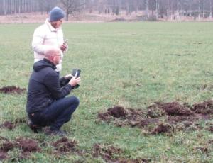 Magnus Oscarsson och Linda Masman studerar de skador som orsakats av vildsvin.